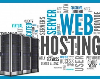 Choosing a Web Hosting Company in noida