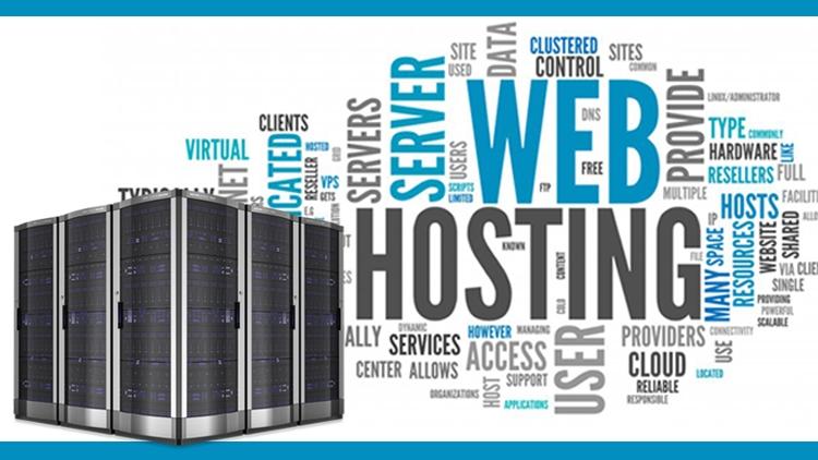 Choosing a Web Hosting Company in noida